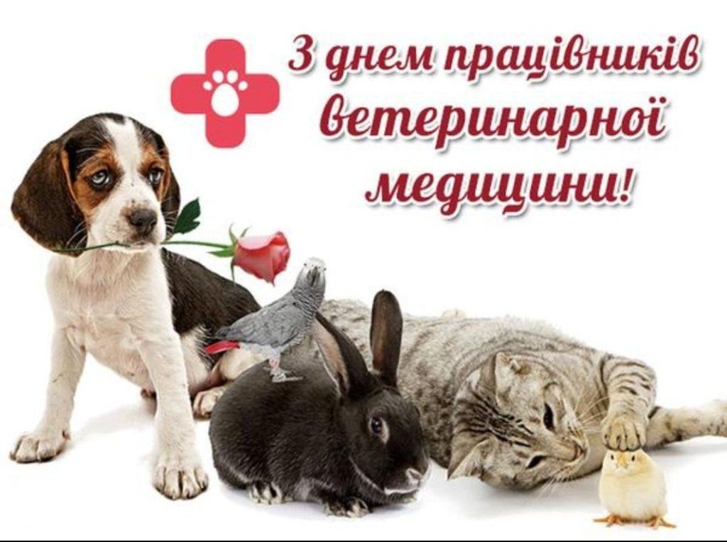 поздравления ветеринарам к новому году так